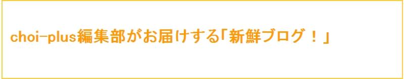 ブログ_choi-plus