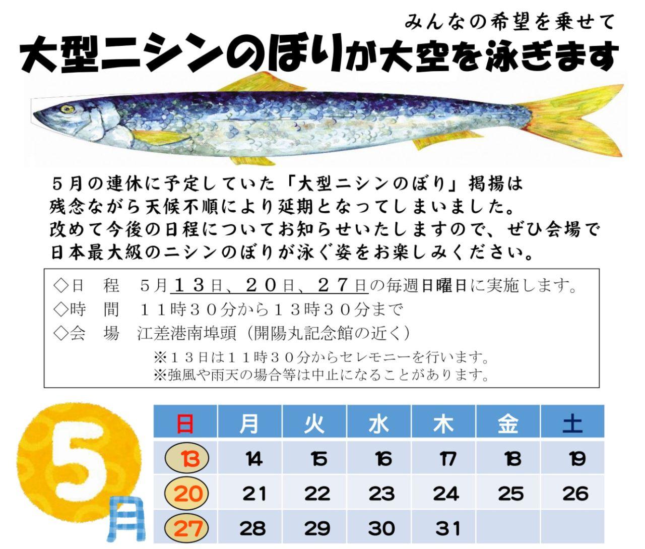 【動画あり】江差の空を「巨大ニシンのぼり」が泳ぐ!? 【今度こそ】