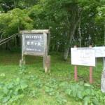 森の入口の目印となる看板