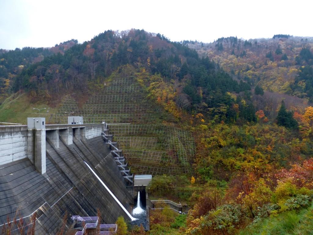 ダムの周囲は色付く広葉樹でいっぱい