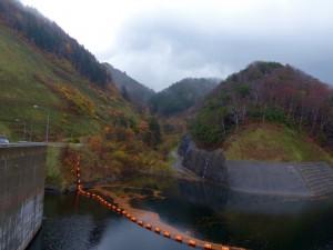 ダム湖面には多くの紅い葉が。10月中旬以降だと紅葉が見頃かも