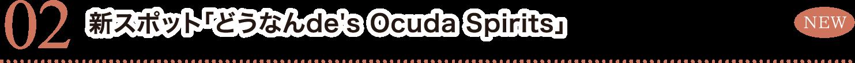 新スポット「どうなんde's Ocuda Spirits」